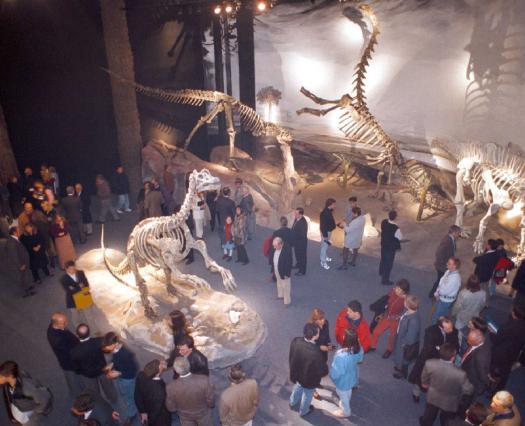 Marca País para el Museo Paleontológico Egidio Feruglio de Trelew