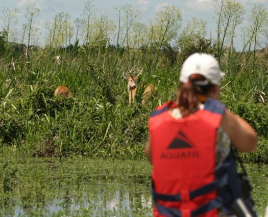 Formalizan la donación de más de 20.000 hectáreas para el Parque Nacional Iberá
