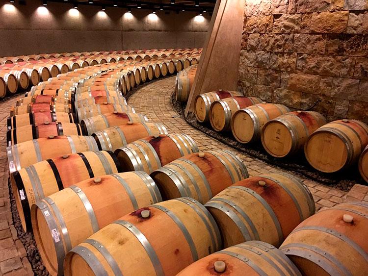 Barriles de vino en una bodega mendocina